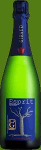 champagnehenrigiraudespritnaturechampagneespacevindesaintchinian